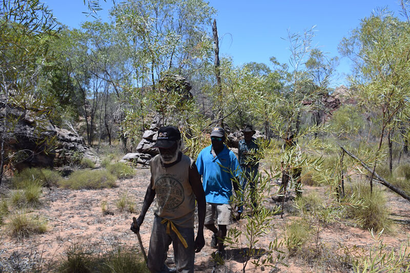 Custodians heading into a small gorge area of rock art at West Lost City